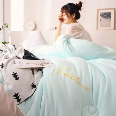 2019新款-针织棉刺绣冬被被子被芯 150x200cm 5斤 天空蓝