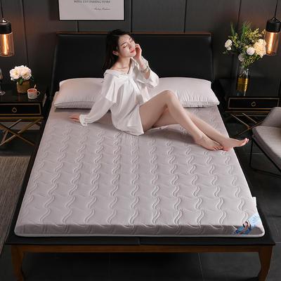 2019新款硬質棉床墊(清風款) 0.9*2.0m 清風-灰