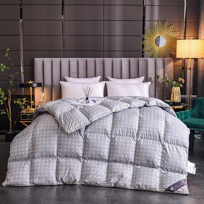 2020新款120支柔赛丝印花羽绒被冬被被子被芯 160x210cm  4.5斤 梵星