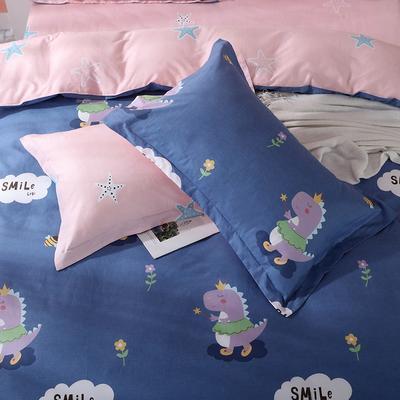 2019新款AB版花型全棉枕套 48cmX74cm/一对 恐龙宝贝-蓝