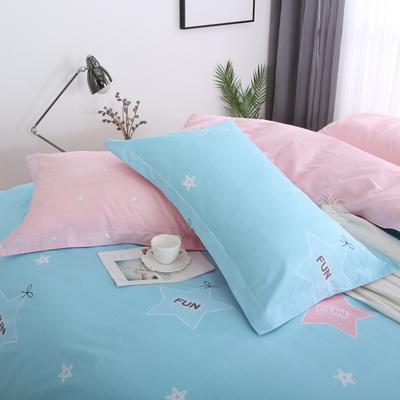 2019新款AB版花型全棉枕套 48cmX74cm/一对 流行花园-兰