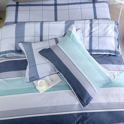 2019新款AB版花型全棉枕套 48cmX74cm/一对 洛阁