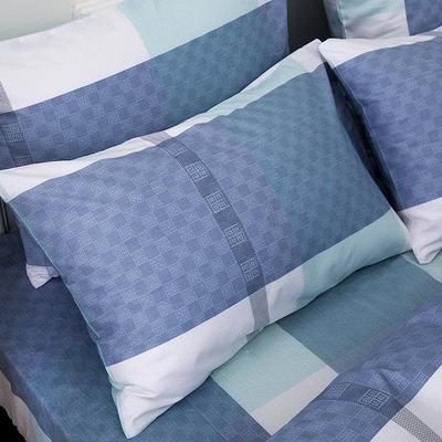 2019新款全棉-单枕套 48cmX74cm一对 拉斐尔-蓝
