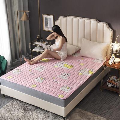 2020新款-磨毛四季床垫(1) 90*200 柠檬鼠