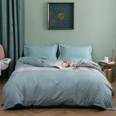 2019新款全棉生态磨毛四件套 2.0m标准床单款 玛丽公主