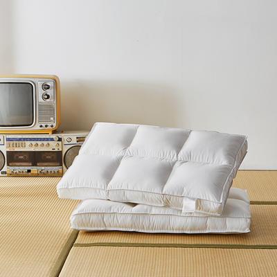 2020新款六分区定型枕枕头枕芯 低枕48*74cm