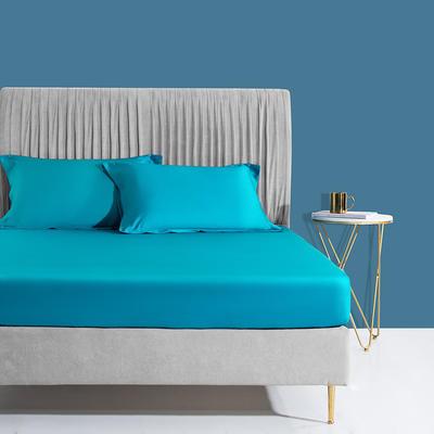 2019新款60s长绒棉枕套 48cmX74cm/对 金石蓝
