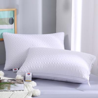 2019新款-立体单边绗绣枕头枕芯 白色立体 48*74
