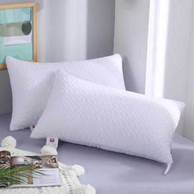 2019新款-立体单边绗绣枕头枕芯 白色单边 42*72