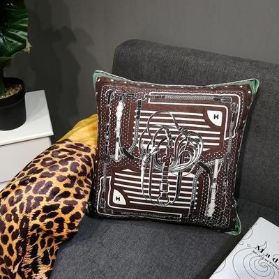 2019新款荷兰绒数码印花抱枕19 45x45cm(套子不含芯) BZ0149