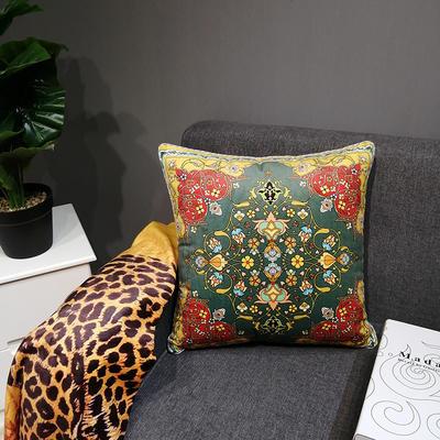 2019新款荷兰绒数码印花抱枕20 45x45cm(套子不含芯) BZ0155