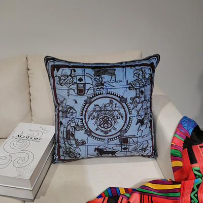2019新款荷兰绒数码印花抱枕21 45x45cm(套子不含芯) BZ0165