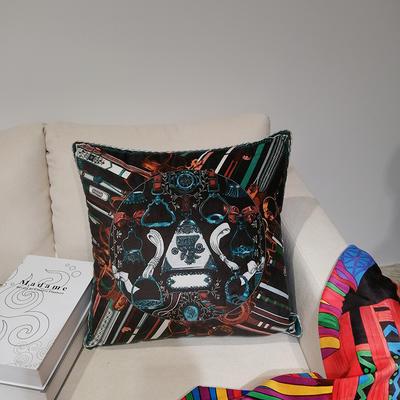 2019新款荷兰绒数码印花抱枕21 45x45cm(套子不含芯) BZ0167