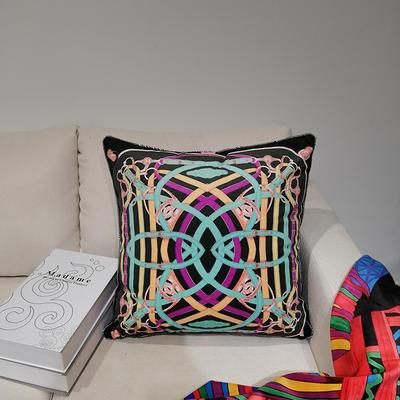 2019新款荷兰绒数码印花抱枕21 45x45cm(套子不含芯) BZ0168