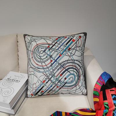 2019新款荷兰绒数码印花抱枕21 45x45cm(套子不含芯) BZ0170