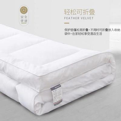 2019新款五星床垫 90*200cm 白色