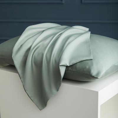 2020新款 天丝枕套 单品 48cmX74cm 海藻绿