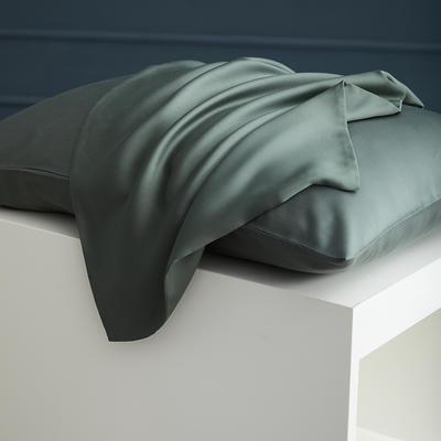 2020新款 天丝枕套 单品 48cmX74cm 松绿