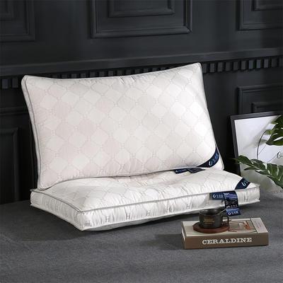 2019新款生命磁枕头枕芯 生命磁枕