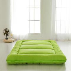 磨毛加厚床垫 90*200 爱果绿