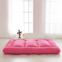 磨毛加厚床垫 90*200 密桃红