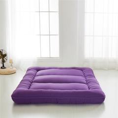 磨毛加厚床垫 90*200 葡萄紫