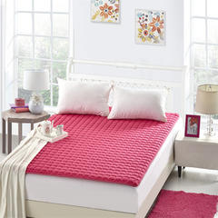 好色床褥 90*200 密桃红