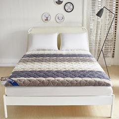 丽诺床垫-针织棉加厚10厘米透气床垫 135*200定做 法兰绒加厚透气床垫-梦幻空间