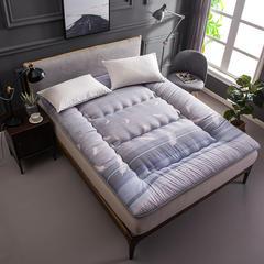 新款-活性印花加厚床垫 90*200 时尚羽毛