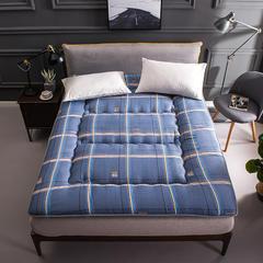 新款-活性印花加厚床垫 90*200 灰色空间