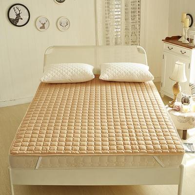 2019新款-好色床褥(1) 0.6*1.2米订做 驼色