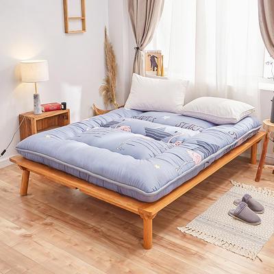 2019新款-10厘米印花加厚床垫-5.26 90*200 10厘米印花加厚床垫-星光火烈鸟