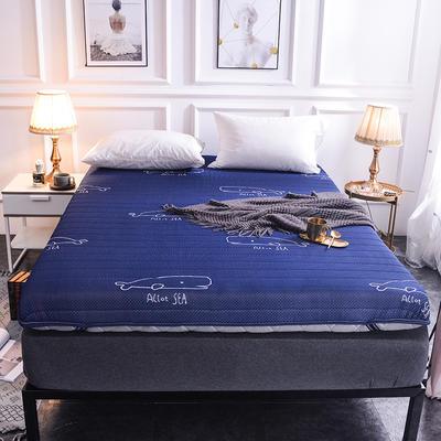 2019新款乳胶床垫 0.9*1.9m 单边-蓝鲸(10cm)