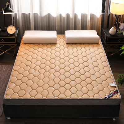 2020新款冰感丝床垫 90*190 针织棉乳胶立体羽毛卡其(5公分)
