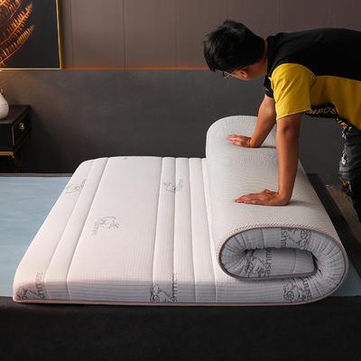 2020新款冰感丝床垫 90*190 针织棉吉羊白(5公分)