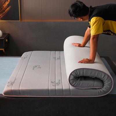 2020新款冰感丝床垫 90*190 针织棉吉羊灰(5公分)