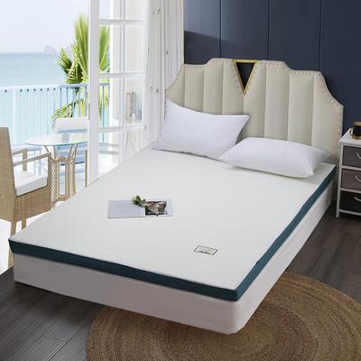 2020新款可拆洗记忆棉床垫 0.9*1.9(约5cm) 浅米白