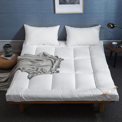2019新款羽丝绒床垫(成人款) 0.9m 白色