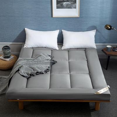 2019新款羽丝绒床垫(成人款) 0.9m 灰色