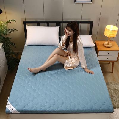 2020新款水洗棉6cm床垫(典雅) 0.9m 典雅-浅蓝