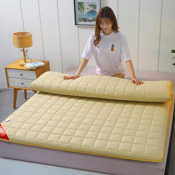 2020新款全棉不塌陷床垫(5公分)