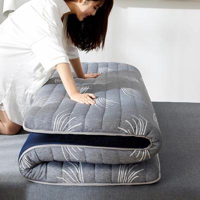 2020新款乳胶记忆棉针织床垫(10公分) 0.9*1.9m 草冷灰