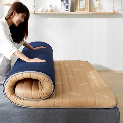 2020新款乳胶记忆棉针织床垫(10公分) 0.9*1.9m 秋羽黄