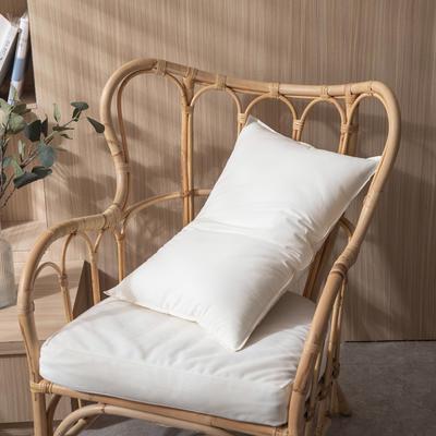 2021新款日式A类水洗棉羽丝绒枕 儿童款40*60cm/420g
