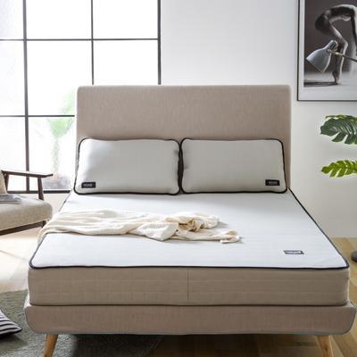 2020 新品冰凉纱凉席 空调软席 1.2m(4英尺)床 条席款  灰