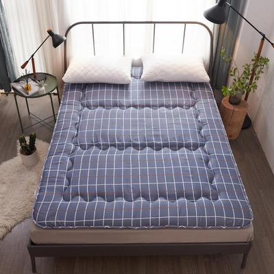加厚舒适榻榻米床垫 90X200cm 多情网