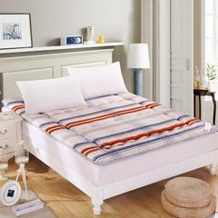 加厚舒适榻榻米床垫 90X200cm 色彩