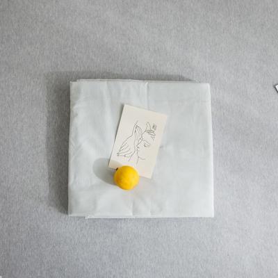 2019新款纯色绣花水洗棉-单品床单 245cmx250cm 暮光-绿