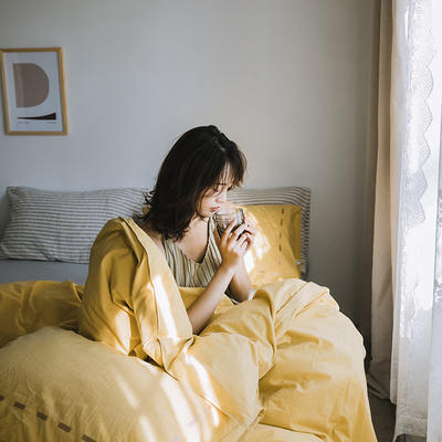 2019新款-纯色绣花水洗棉四件套 床单款三件套1.2m(4英尺)床 暮光-黄