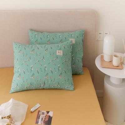 2021新款印花单品枕套 48*74/对 纯粹-绿枕套